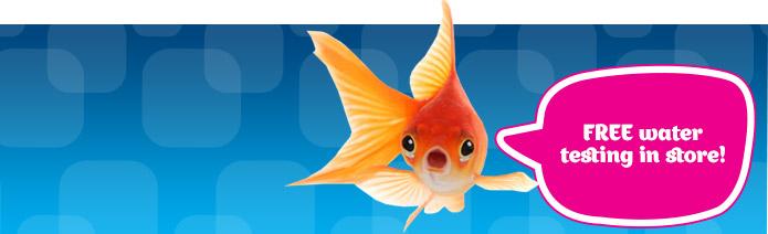 Aquarium h2o testing