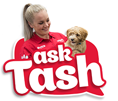 Ask Trainer Tash