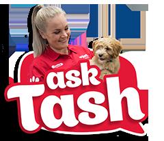 Ask Trainer Tash