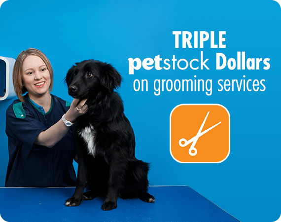 Triple PETstock Dollars on grooming services