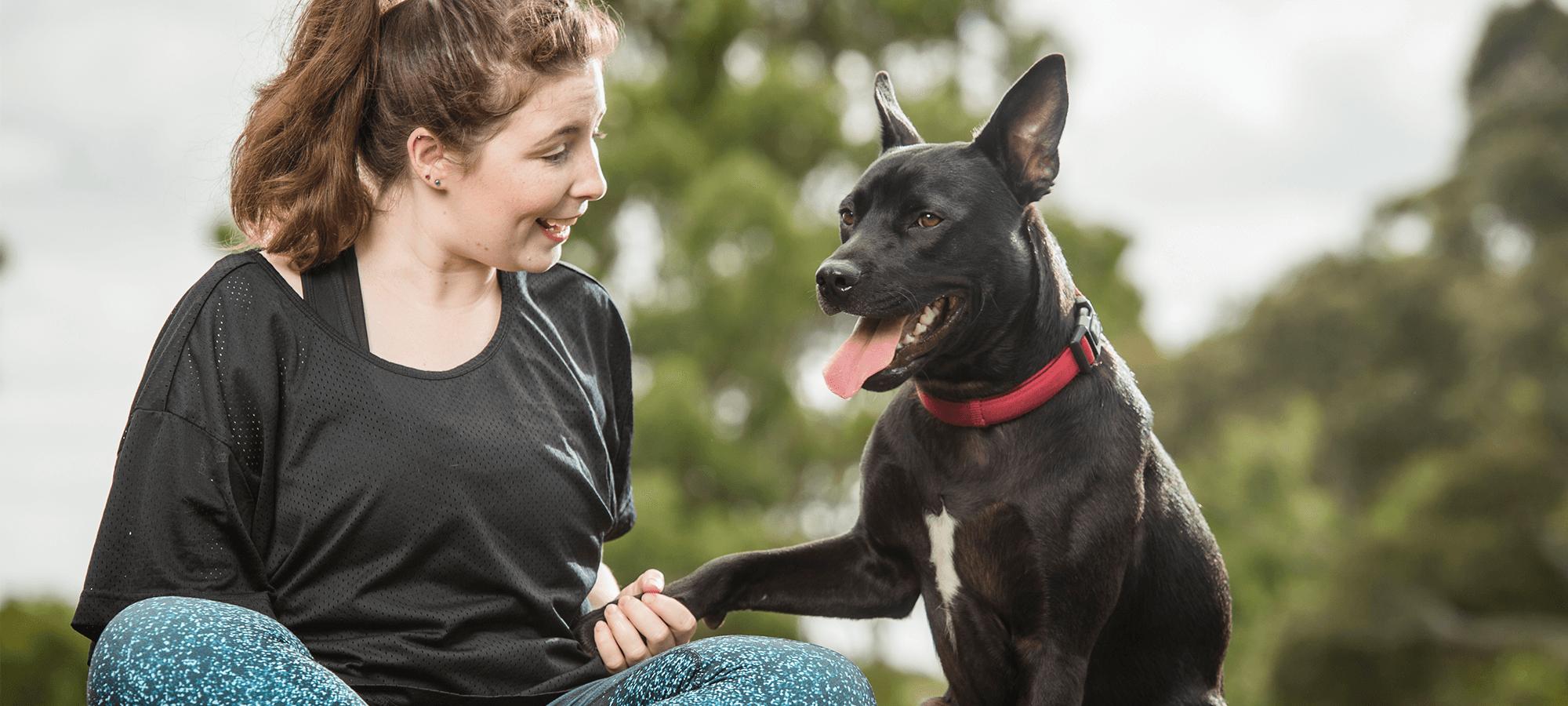 Benefits of Animal Adoption