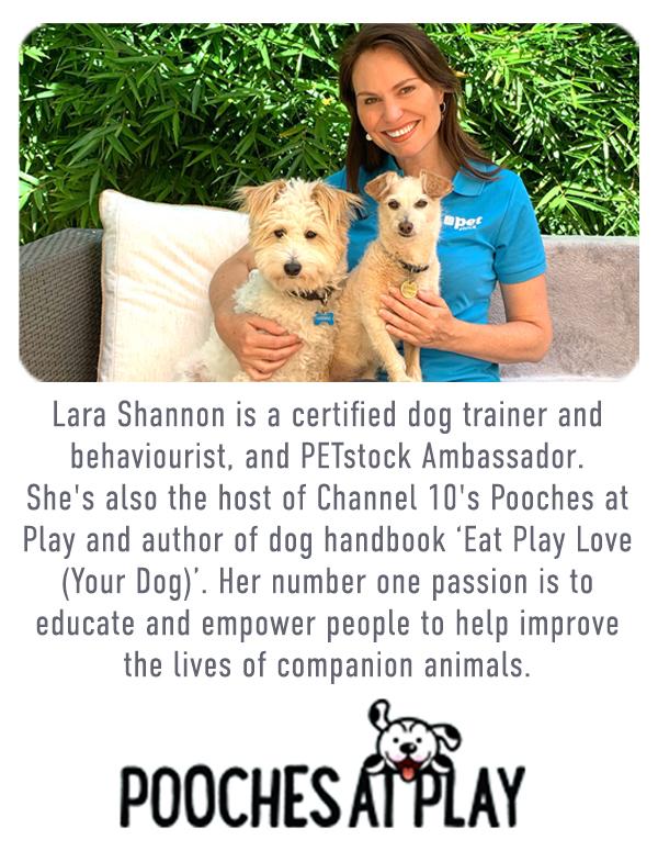 About Lara Shannon