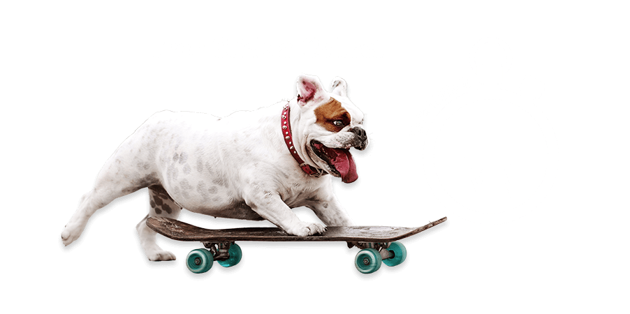 Free Click & Collect - Ready in under 60min