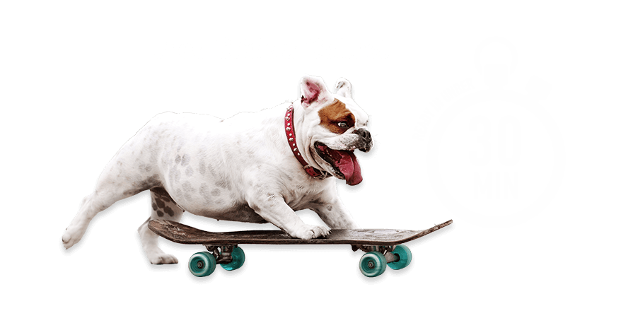 Free Click & Collect - Ready in under 30min