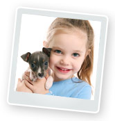 Training a Puppy: Toilet Training & Classes