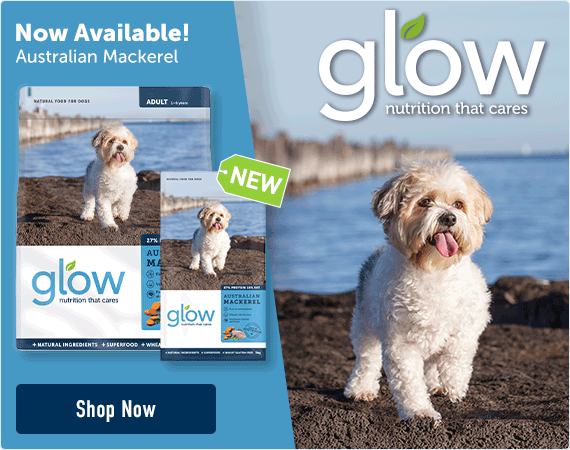 Glow Mackerel Now Available