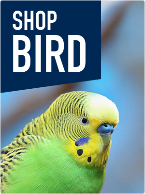 Shop Bird Products