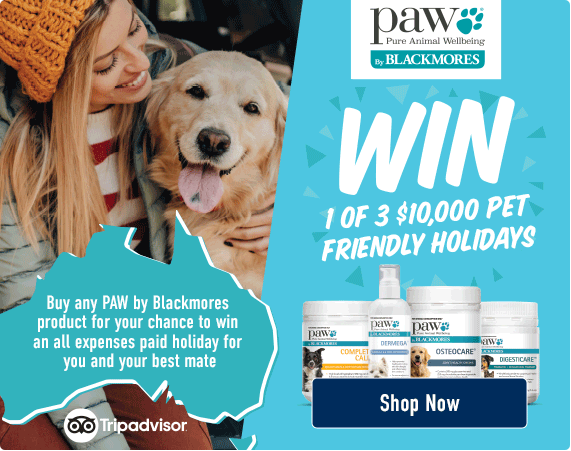 Win 1 of 3 $10,000 Pet Friendly Holidays. Buy any PAW by Blackmores product for your chance to win an all expenses paid holiday for you and your best mate! Shop now!