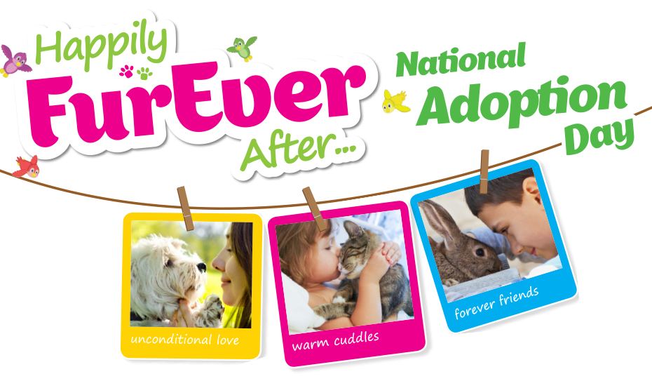 Find Happily FurEver After. Adopt a Pet at National Pet Adoption Day