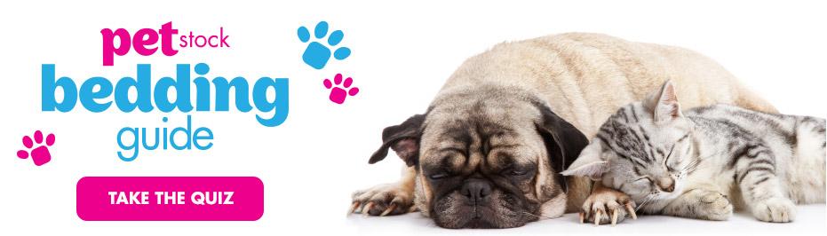 Pet Bedding Guide