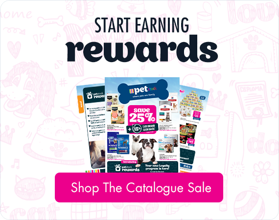 Start Earning Rewards - PETstock Catalogue Sale Now On. Shop the catalogue