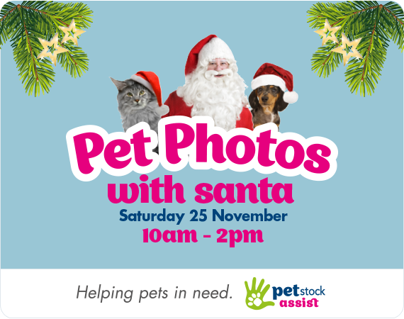 Pet Photos with Santa. Saturday 25th November 10am - 2pm