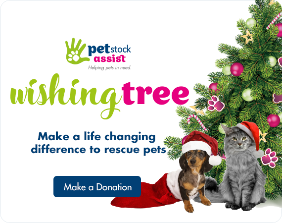 PETstock Assist Wishing Tree, Make a donation