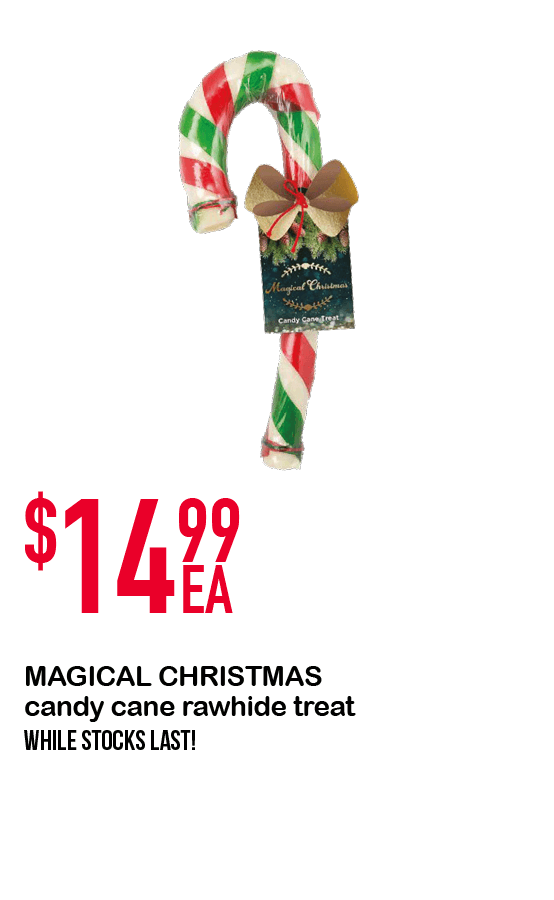 MAGICAL CHRISTMAS candy cane rawhide treat $14.99ea