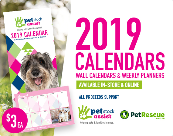 2019 Calendars available in-store & online