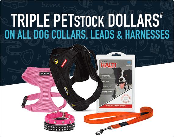 Triple PETstock Dollars# on all dog collars, leads & harnesses