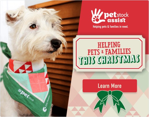 PETstock Assist - Helping Pets and Families in Need this Christmas. Click here to learn more about how you can help.