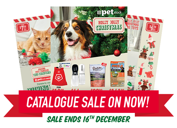 Catalogue Sale on Now! Sale Ends 16th December.