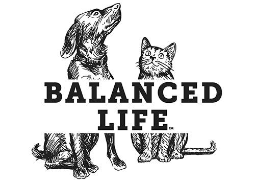 Balanced Life