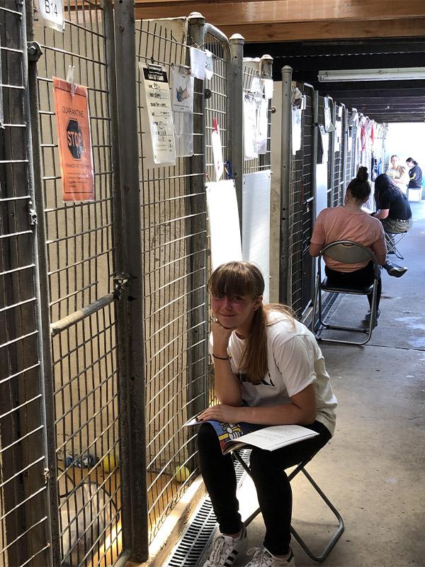 Shelter Reading Program