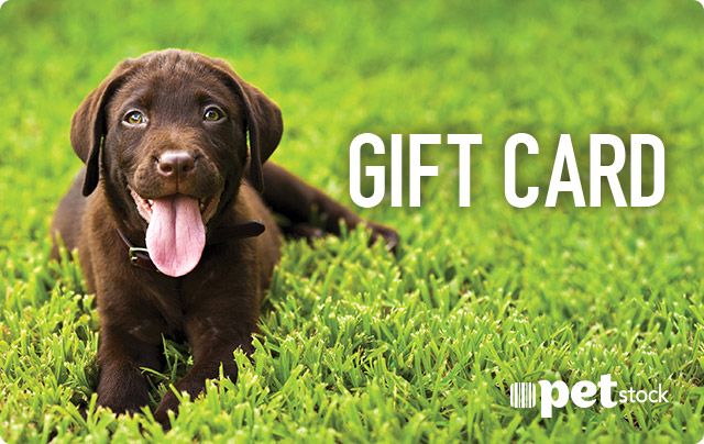 Petstock give your pet lover a petstock gift card negle Gallery