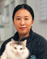 Dr. Emily Chan - Head Veterinarian