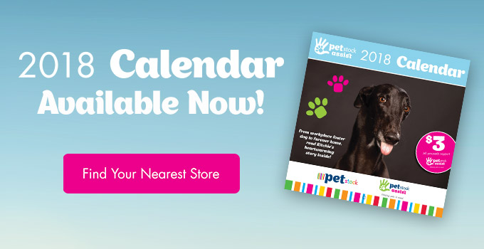 PETstock Assist Calendars Available Now