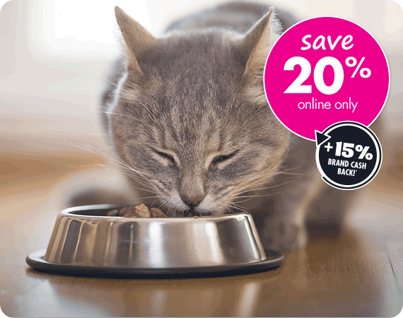 Shop Premium Cat Food