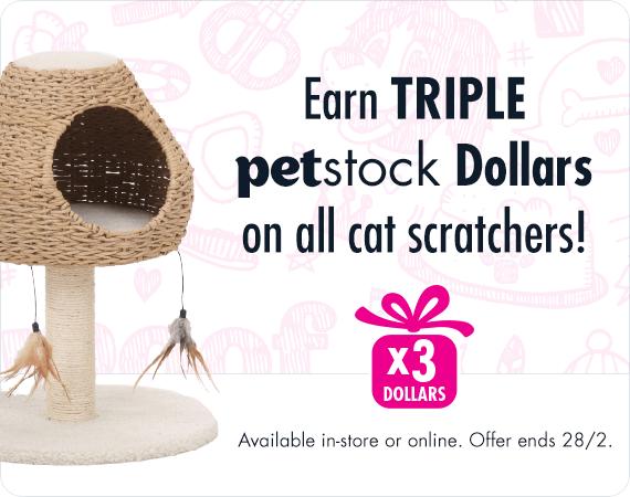Earn Triple Dollars on all cat scratchers!