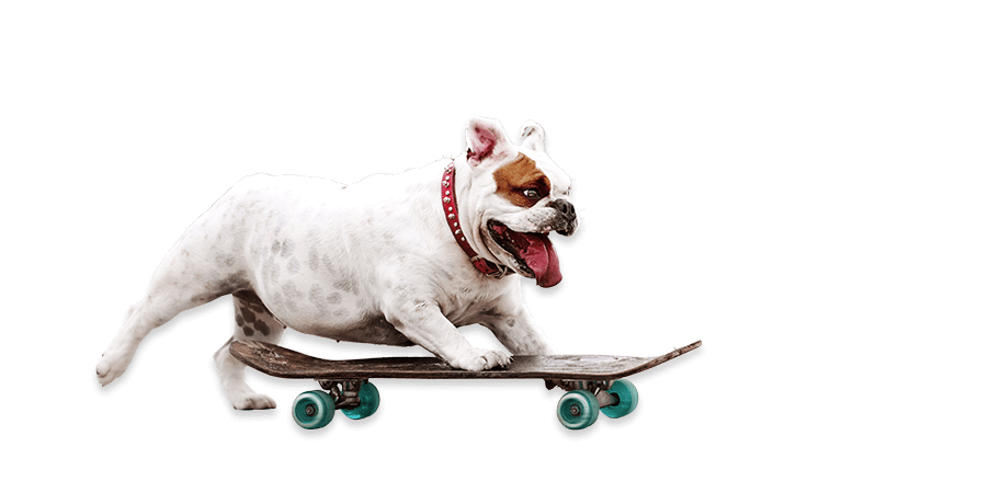 Free Click & Collect - Ready in under 45min