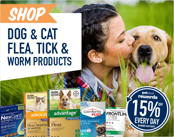 Shop Dog & Cat Flea, Tick & Worm Products