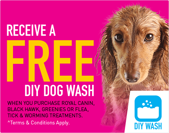 Receive a FREE DIY Dog Wash when you pruchase Royal Canin, Black Hawk, Greenies or Flea, Tick & Worming treatments. ^Terms & Conditions Apply.