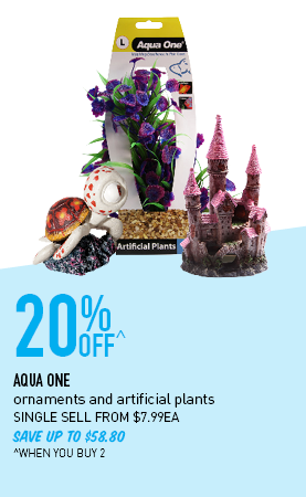20% Off^ ornaments and artificial plants SINGLE SELL FROM $7.99EA SAVE UP TO $58.80 ^WHEN YOU BUY 2