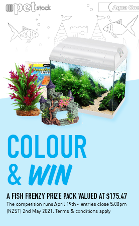 Colour & Win! Win a fish frenzy prize pack valued at $175.47. The competition runs April 19th - entries close 5:00pm (NZST) 2nd May 2021. Competition colouring sheet must be picked up from and submitted to, a physical PETstock store. Competition is open to persons up to the age of 12 who are residents of New Zealand. One winner will be selected on 17th May 2021 and will be notified via phone.